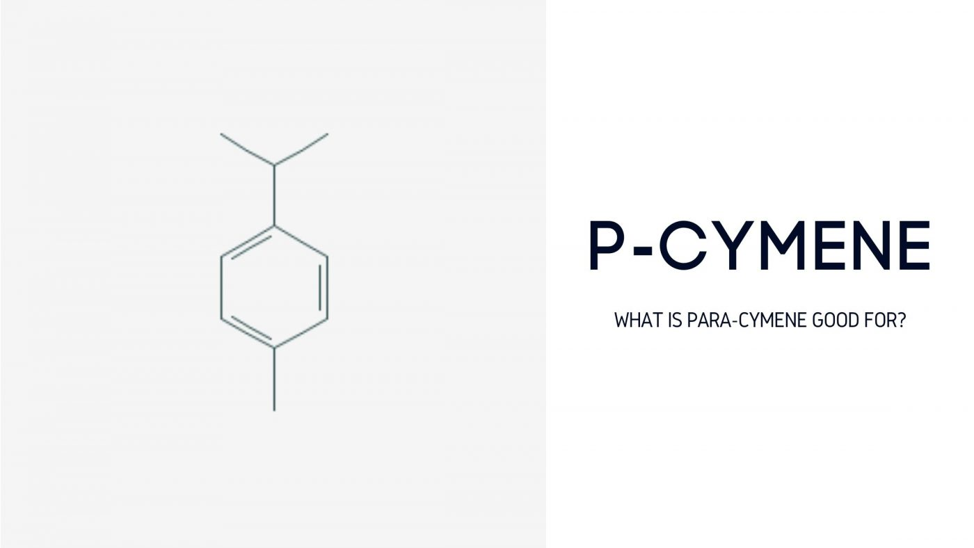 P-Cymene what is para-cymene