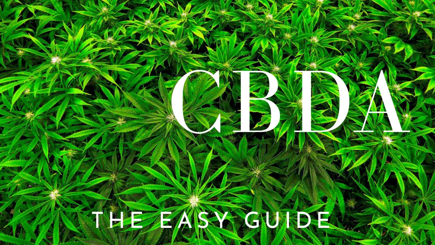 CBDA The Easy Guide