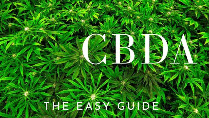 CBDA The Easy Guide